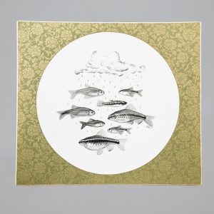 Olalla Castro: Fische, Collage